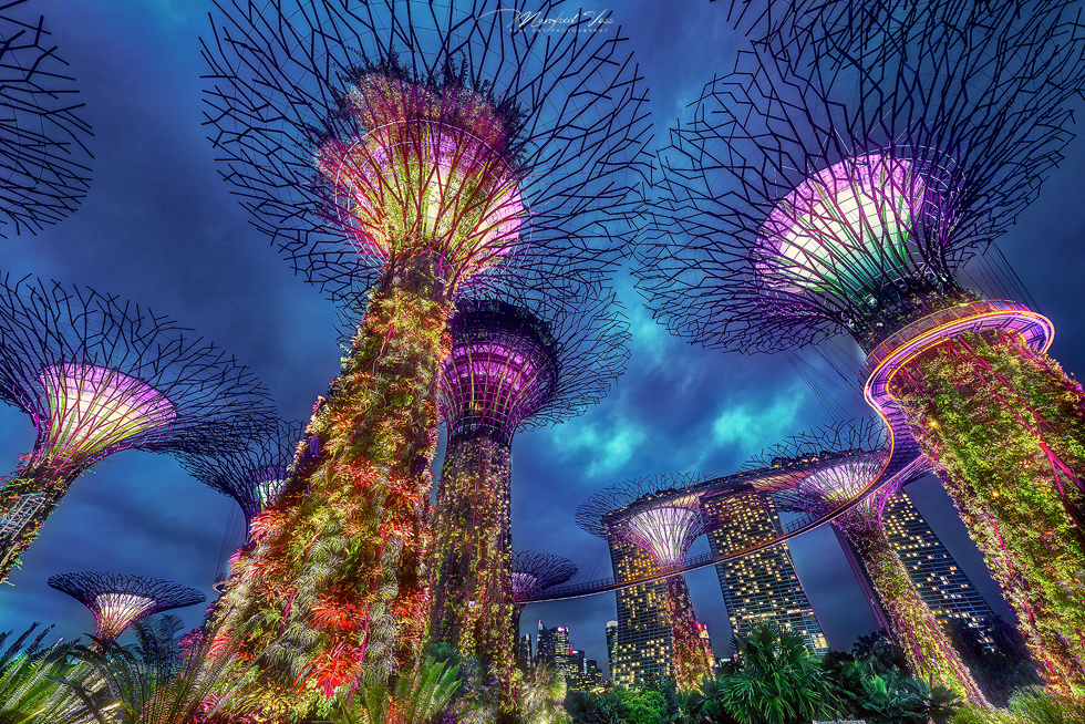 Gardens by the Bay , Singapur , Asien