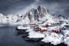 Red Rabins at Hamnoy , Lofoten / Norwegen
